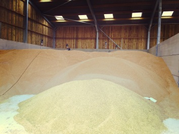 Farmageddon Grain in the Shed https://restorationgirl.org